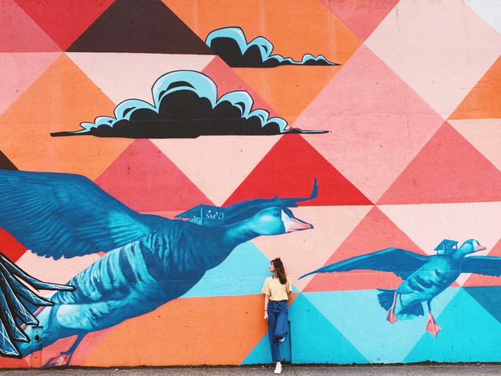 Fresque mural street art Clermont-Ferrand fille canard nuage