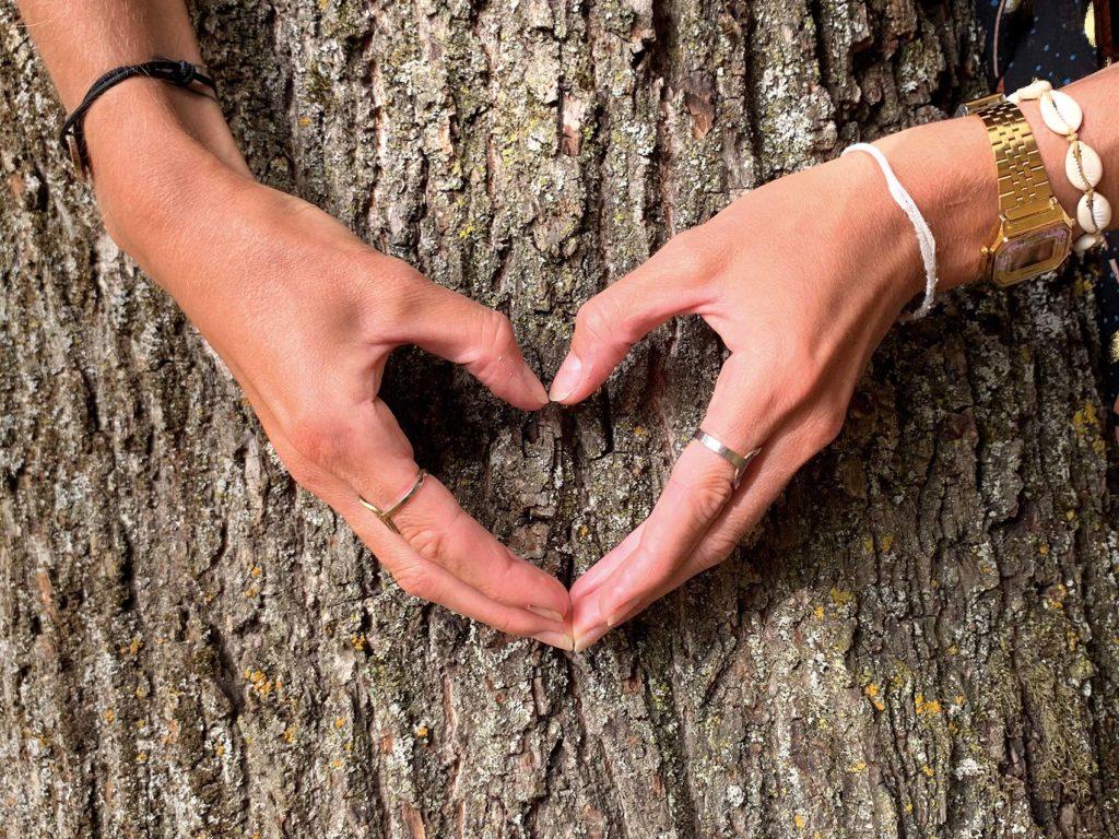 bain de forêt arbre bien être naturel coeur mains